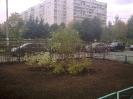 Газон_1 09.2012