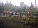 Газон_2 09.2012